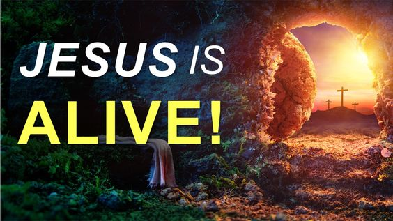 Jesus Cures All – Daily Message 05-28-2020